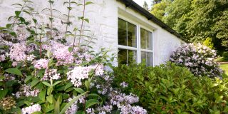 Self Catering Cottage at Craigadam